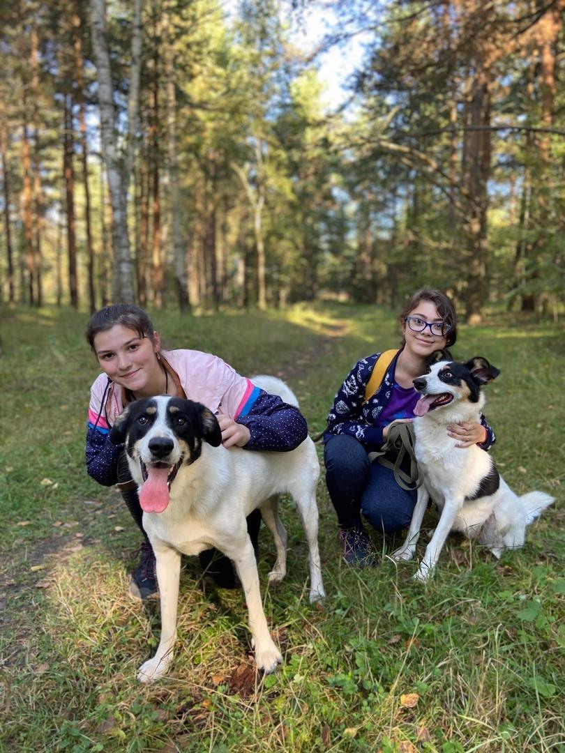Волонтеры Ярославской области учатся новому в рамках программы «Добрая неделя»