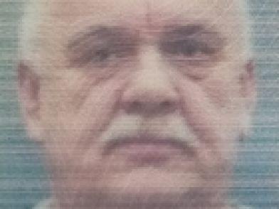 В Ярославской области ищут пропавшего 59-летнего грибника
