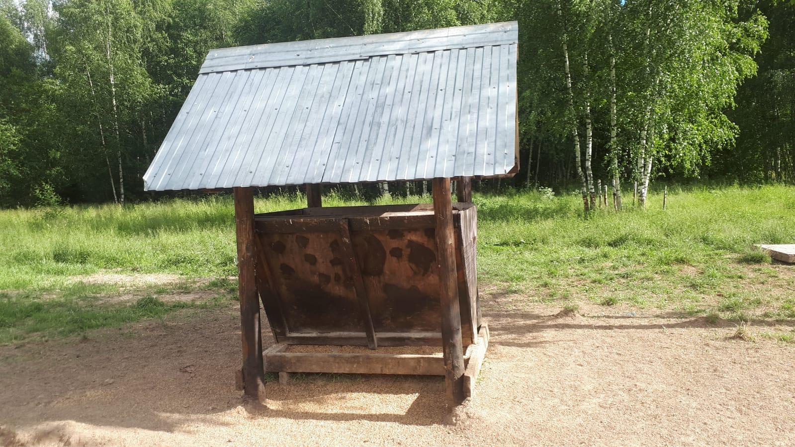 В лесах Ярославской области обустроили тысячи площадок для подкормки животных