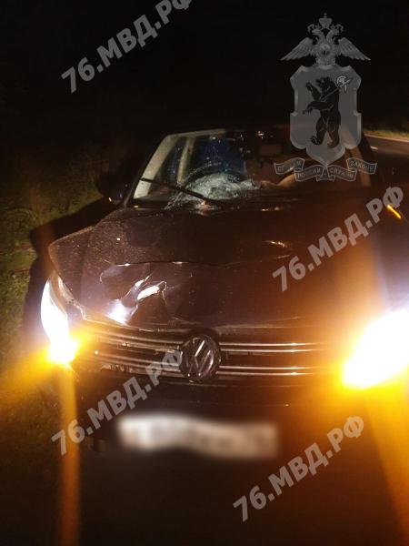 В Ярославской области женщина на иномарке насмерть сбила пешехода