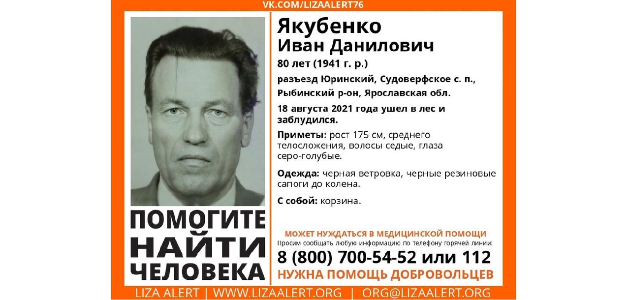 В Рыбинском районе ищут пенсионера, который ушел в лес