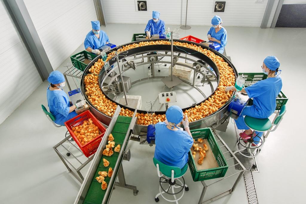Ярославский производитель яиц готовится выйти на рынок органической продукции