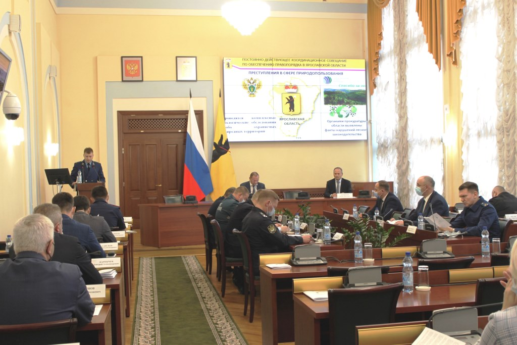 34 факта незаконной рубки лесных насаждений пресекли в Ярославской области с начала года