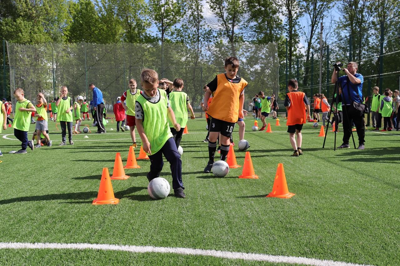 В школах Ярославской области третий урок физкультуры станет уроком футбола