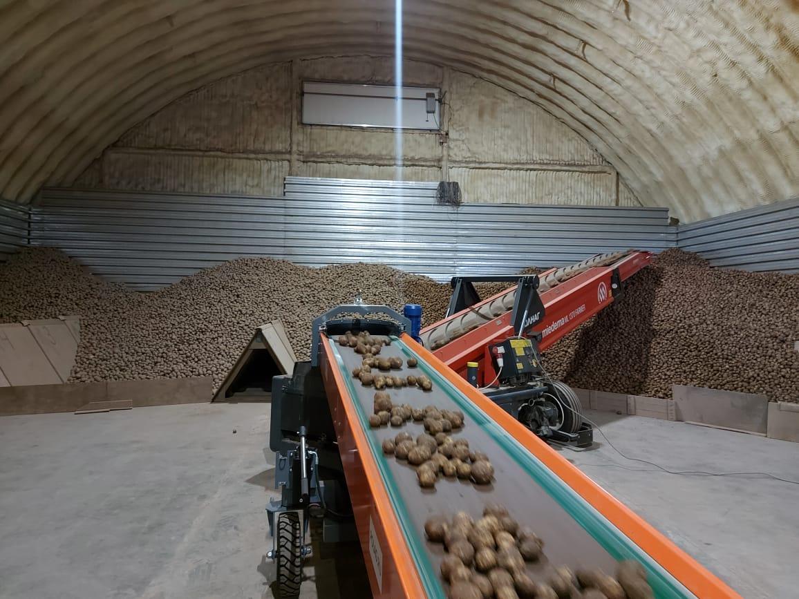 Уборка зерновых в Ярославской области идет с опережением прошлогодних показателей