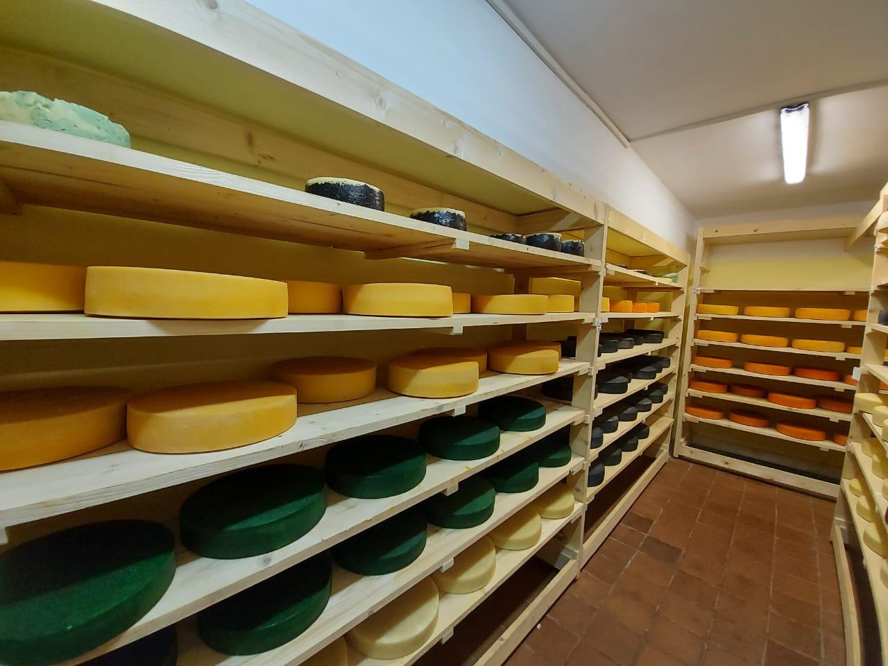 Ярославский сыр получил бронзовую награду на международном конкурсе во Франции
