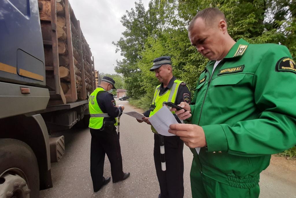 В ходе операции в Ярославской области проверяли большегрузы, перевозящие древесину