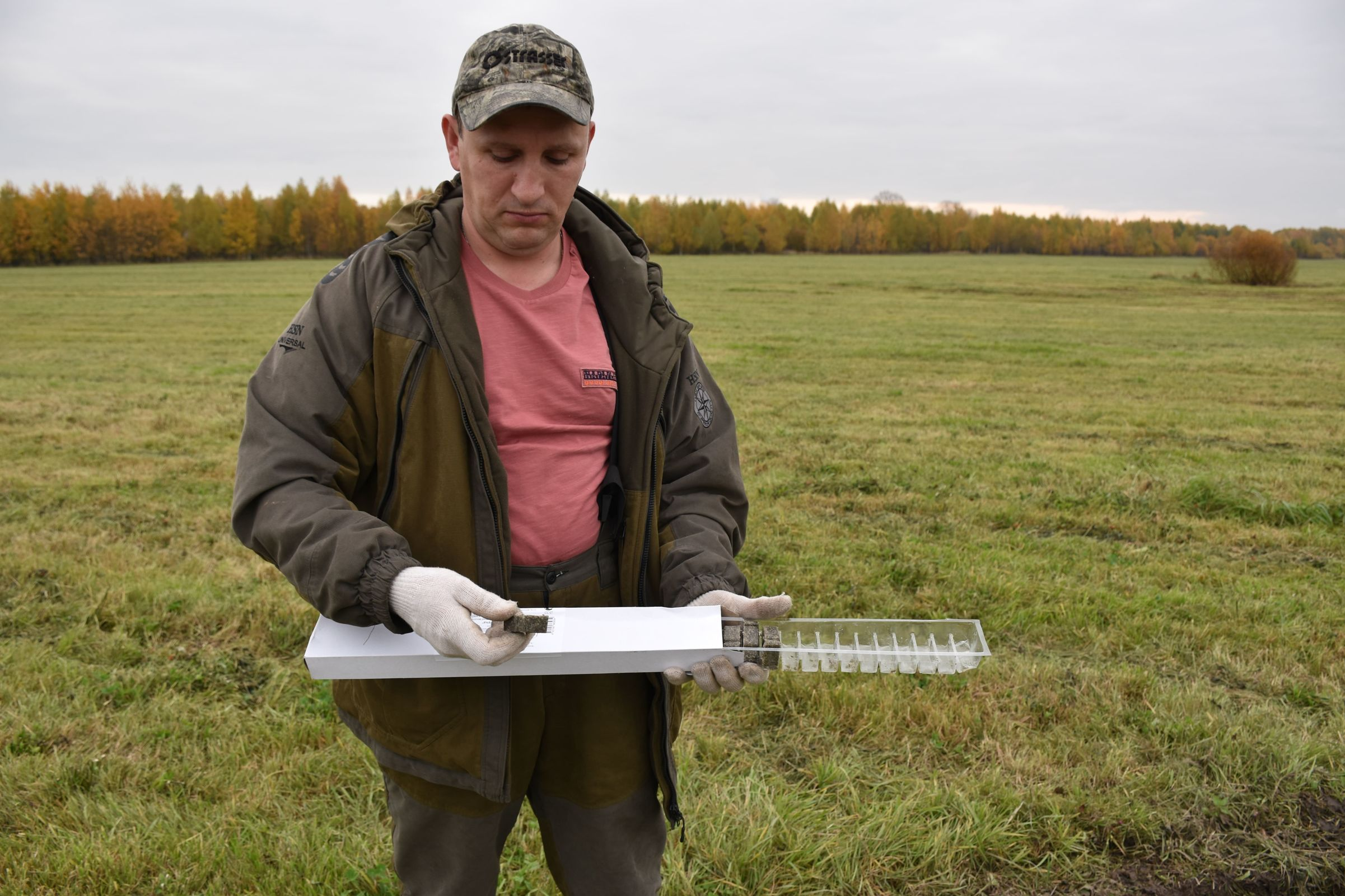 Вакцинация, кормушки и защитные ограждения: как защищают диких животных в Ярославской области