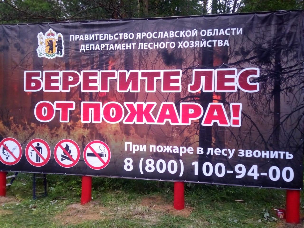 В Ярославской области завершился пожароопасный сезон
