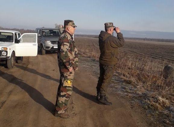 В Ярославской области задержали браконьера, застрелившего двух лосей