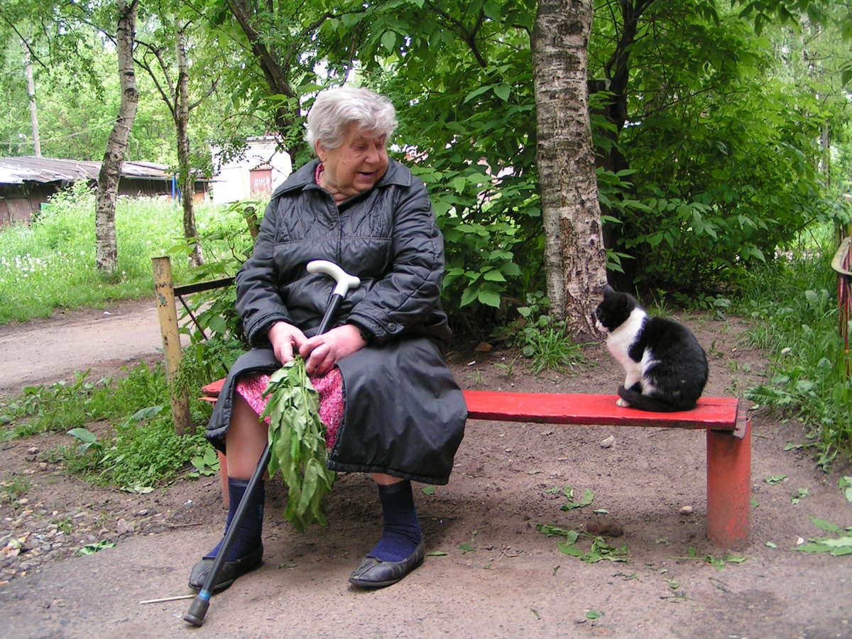 Ярославский благотворительный фонд помощи животным выиграл президентский грант