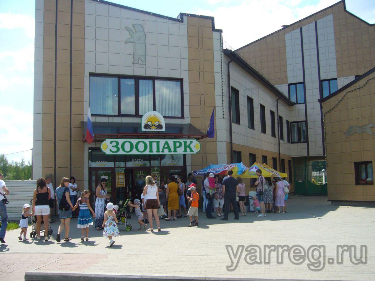 В Ярославском зоопарке родились три винторогих козленка