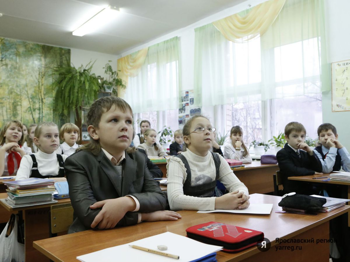 Школу взять на абордаж. Ярославцы треплют нервы, пытаясь записать детей в первый класс