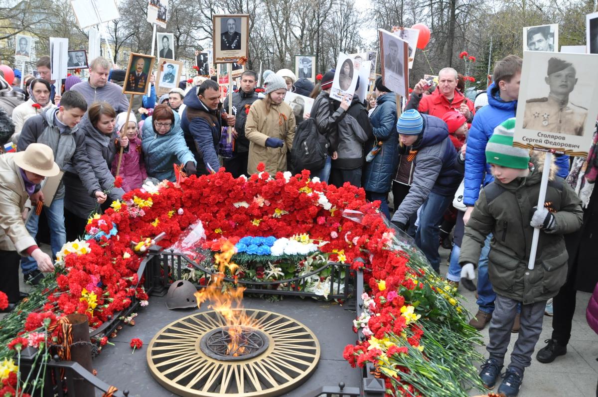 Парад, концерты и кино в полевом кинотеатре: опубликована полная программа Дня Победы в Ярославле