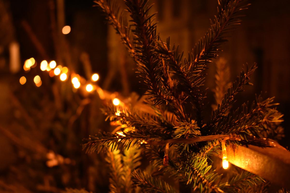 Ярославль к Новому году украсят до 10 декабря