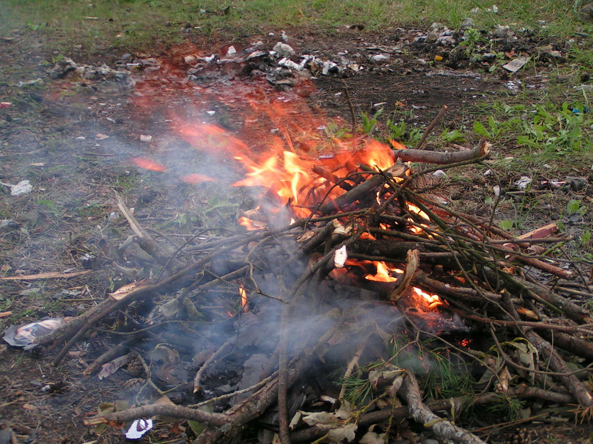 В Ярославской области объявлен период повышенной пожарной опасности