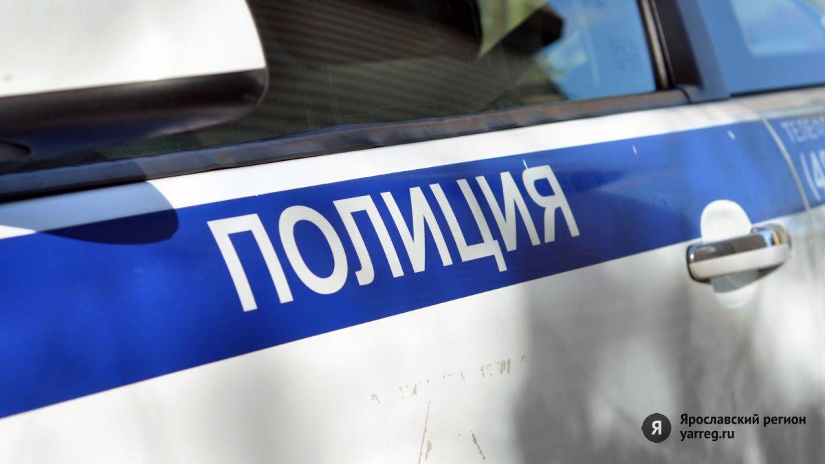 Сотрудники ППС задержали подозреваемых в краже колес с машин в Ярославле