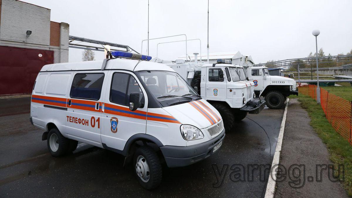 В Ярославской области женщина умерла от свиного гриппа