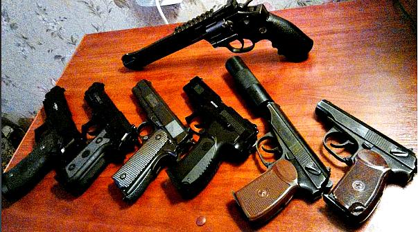 Ярославца приговорили к 320 часам обязательных работ за отстрел двух лосих