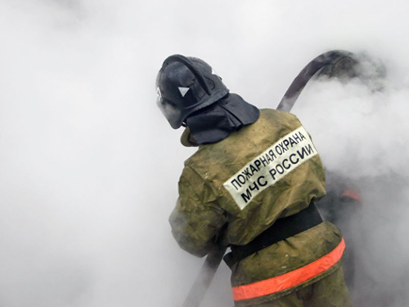 В Ярославской области сгорела пилорама