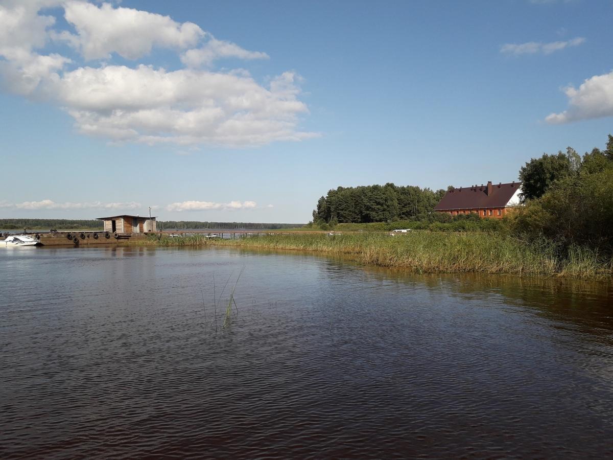 В Ярославской области дети 10 минут безуспешно пытались найти утонувшего мужчину