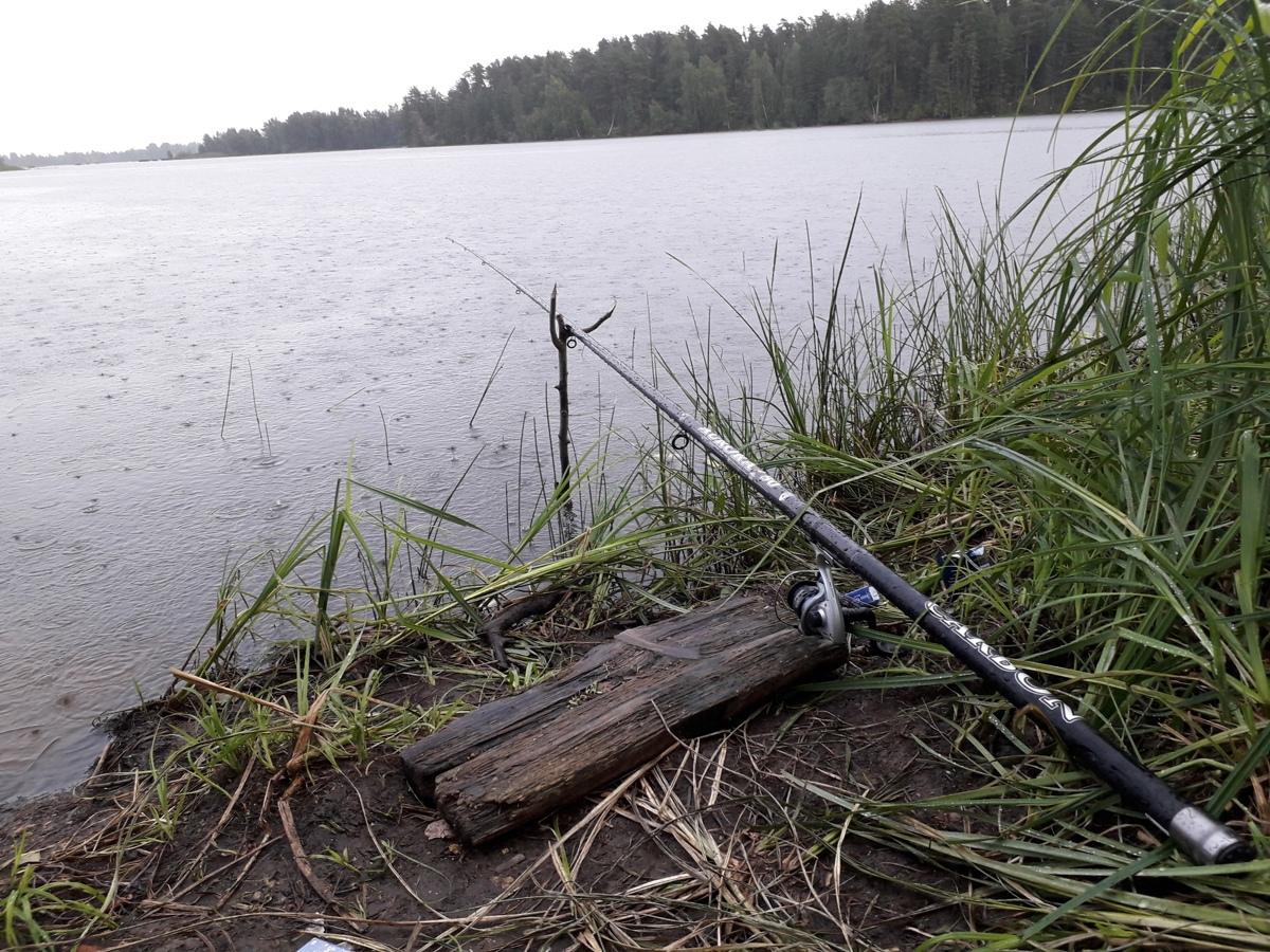 Установлены единые сроки запрета рыбной ловли на всей акватории Горьковского водохранилища