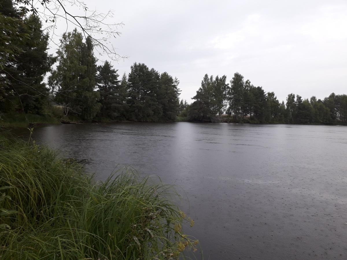 В Ярославской области утонул молодой мужчина