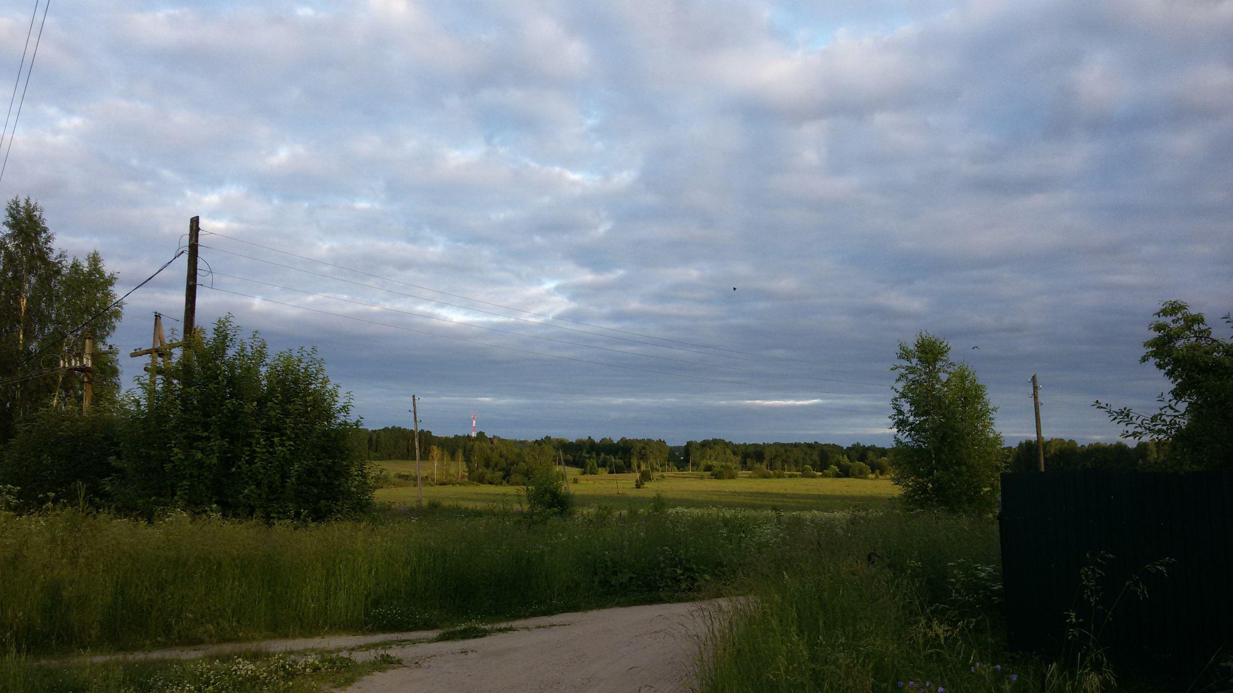 В Ярославской области утвердили признаки нецелевого и противоправного использования земель сельхозназначения