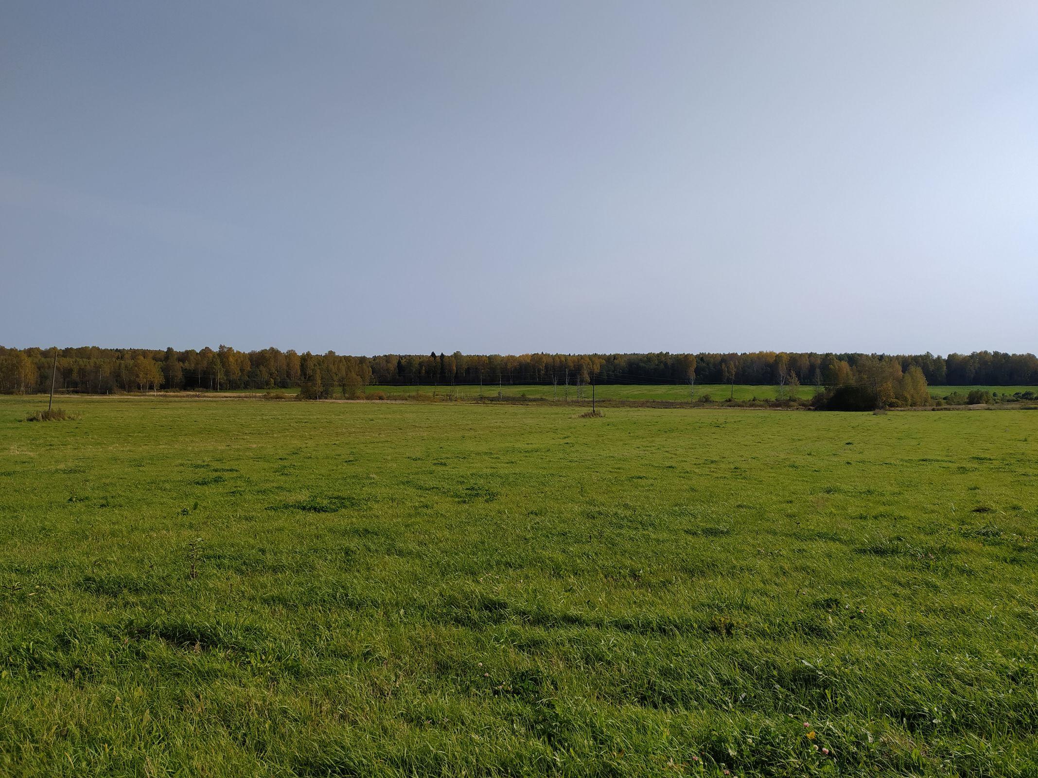 В Ярославской области работы по подготовке почвы проведены на площади более 500 гектаров