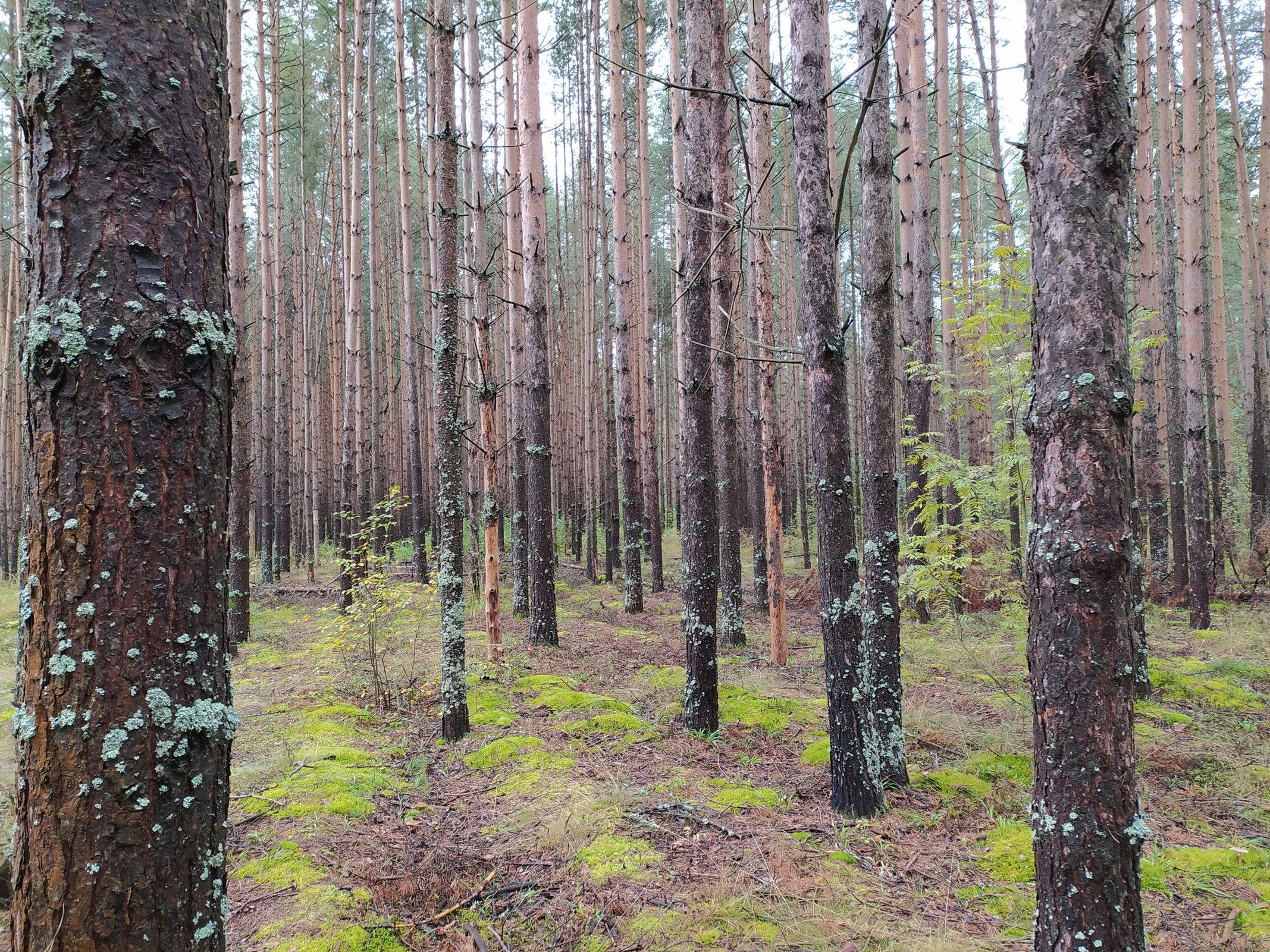 В Ярославской области подготовили предложения для любителей рыбалки и загородного отдыха