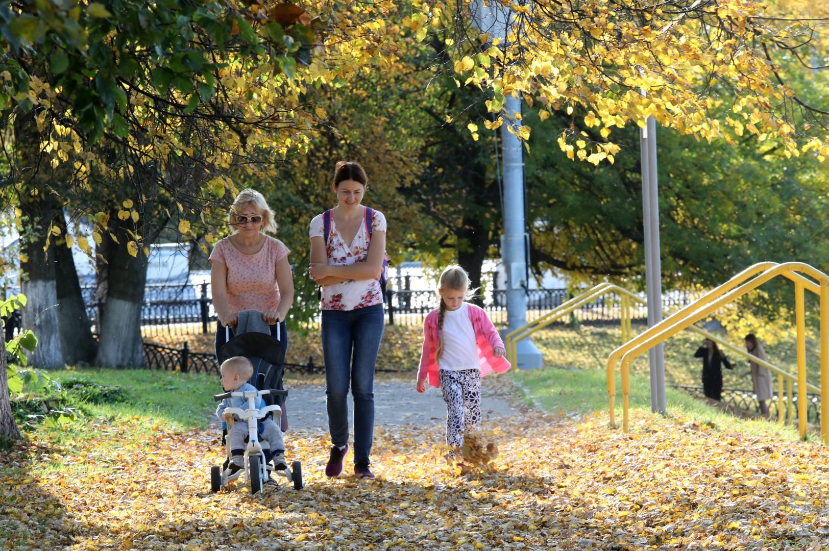 Семейная осень в Ярославии: где можно интересно провести время и взрослым, и детям