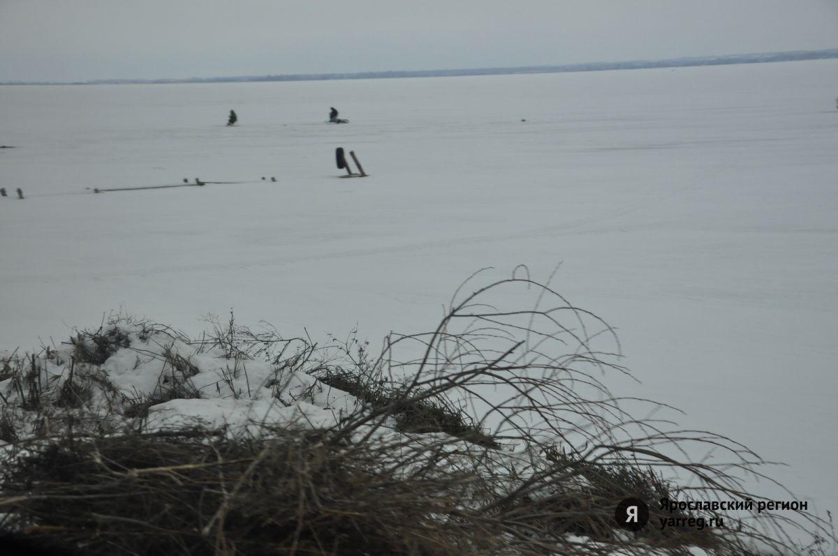 На Рыбинском водохранилище рыбаки ловят рыбу руками