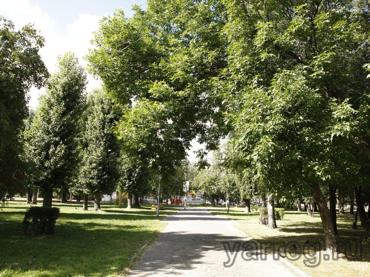 Из 53 запланированных дворов в Ярославле отремонтированы 27