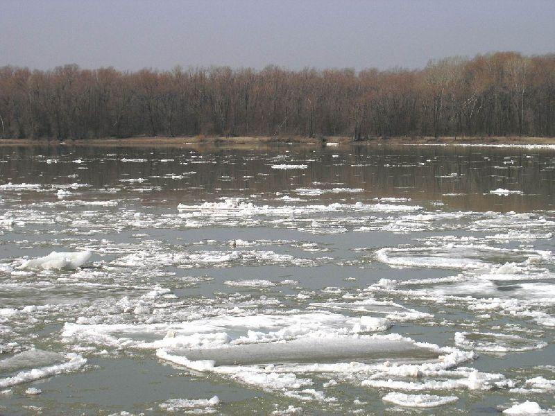 В Рыбинске введен запрет выхода на лед