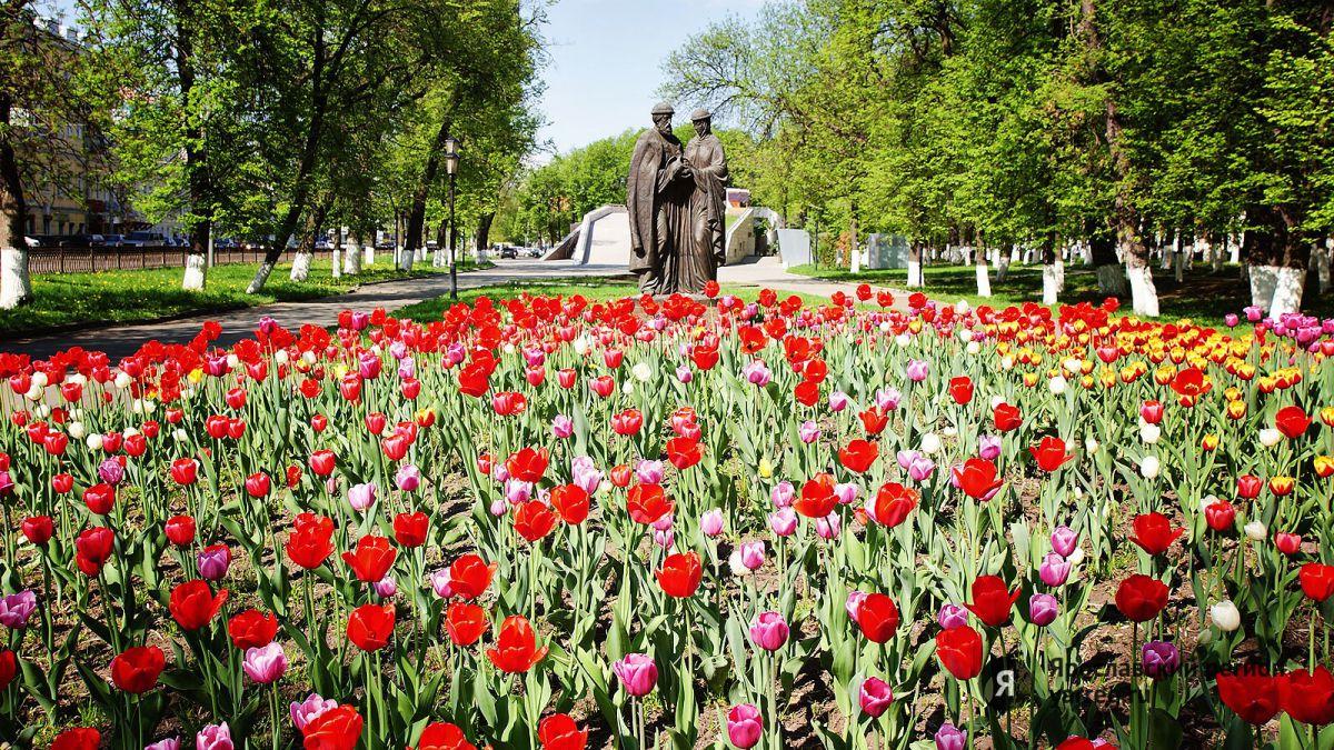 На Стрелке в Ярославле появятся цветочные композиции