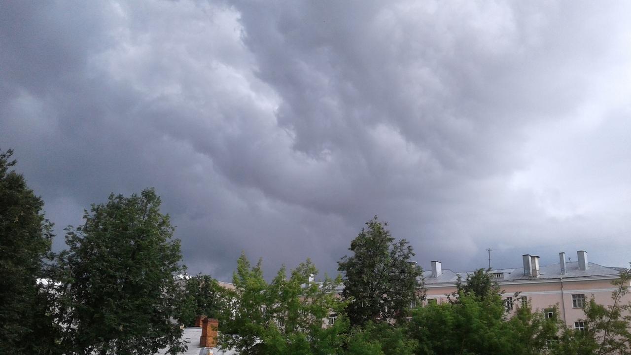 МЧС предупредило ярославцев о грозе и усилении ветра в пятницу