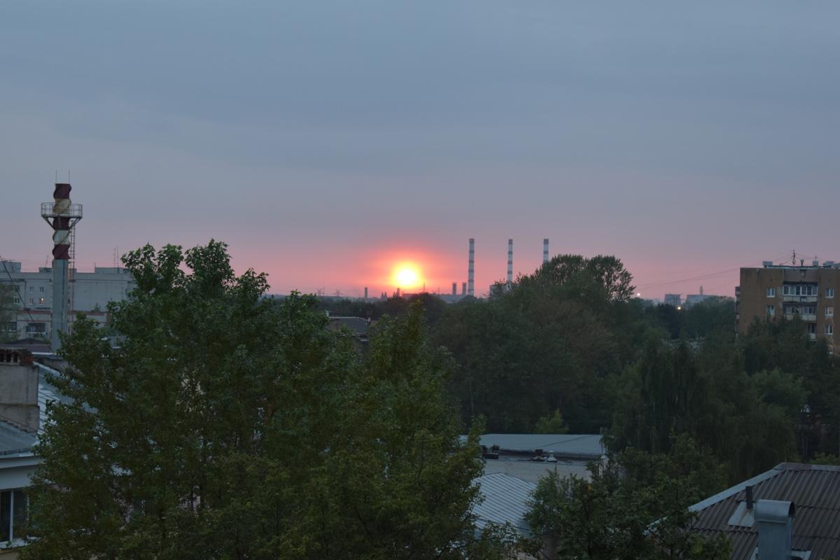 Синоптики рассказали, когда в Ярославской области спадет аномальная жара