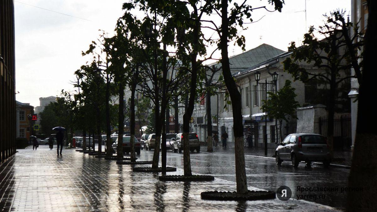 В Ярославской области на этой неделе температура опустится до нуля градусов – Гидрометцентр