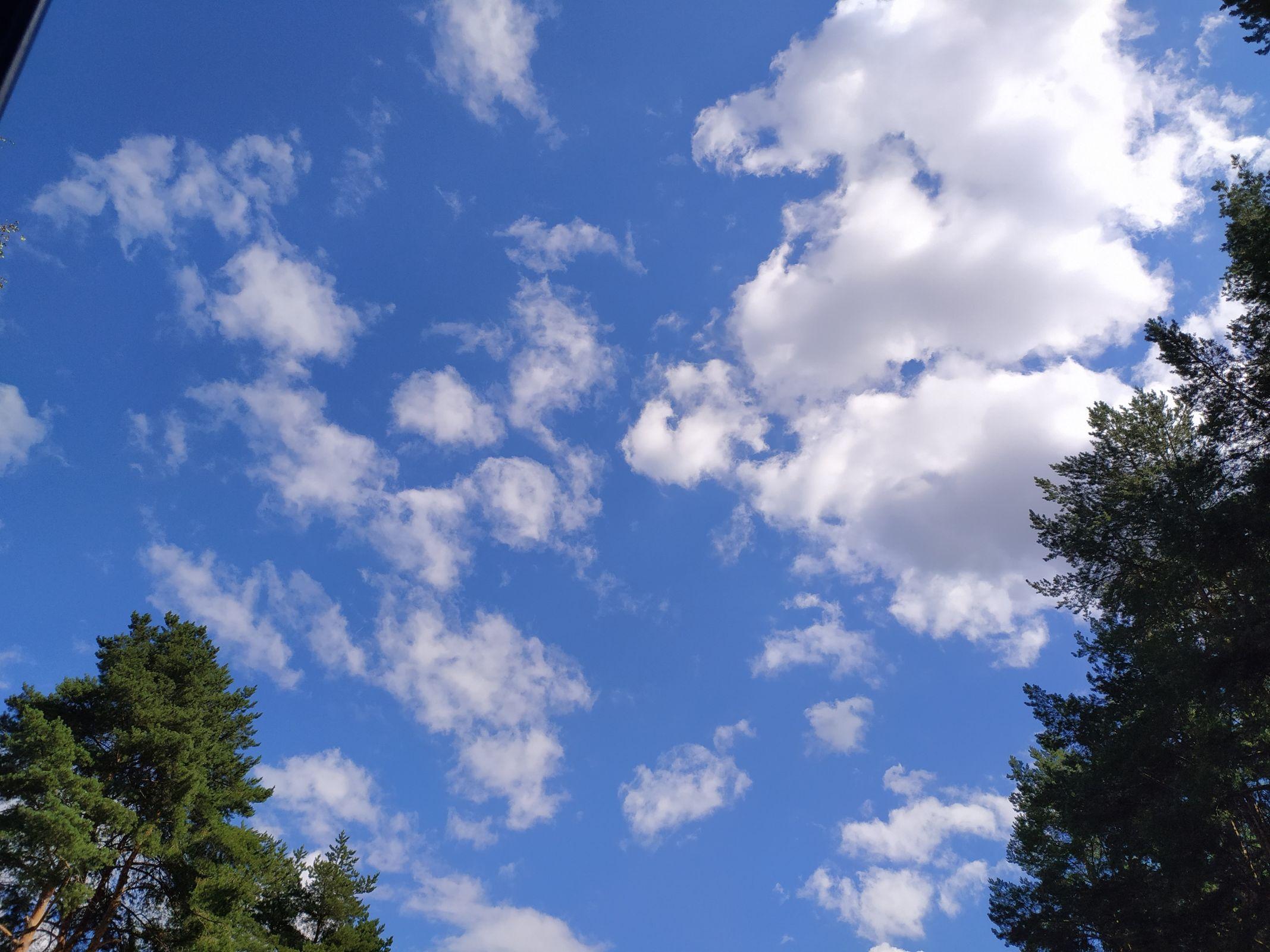 Заключительный знойный аккорд: в Ярославскую область в последний раз за лето нагрянет 30-градусная жара