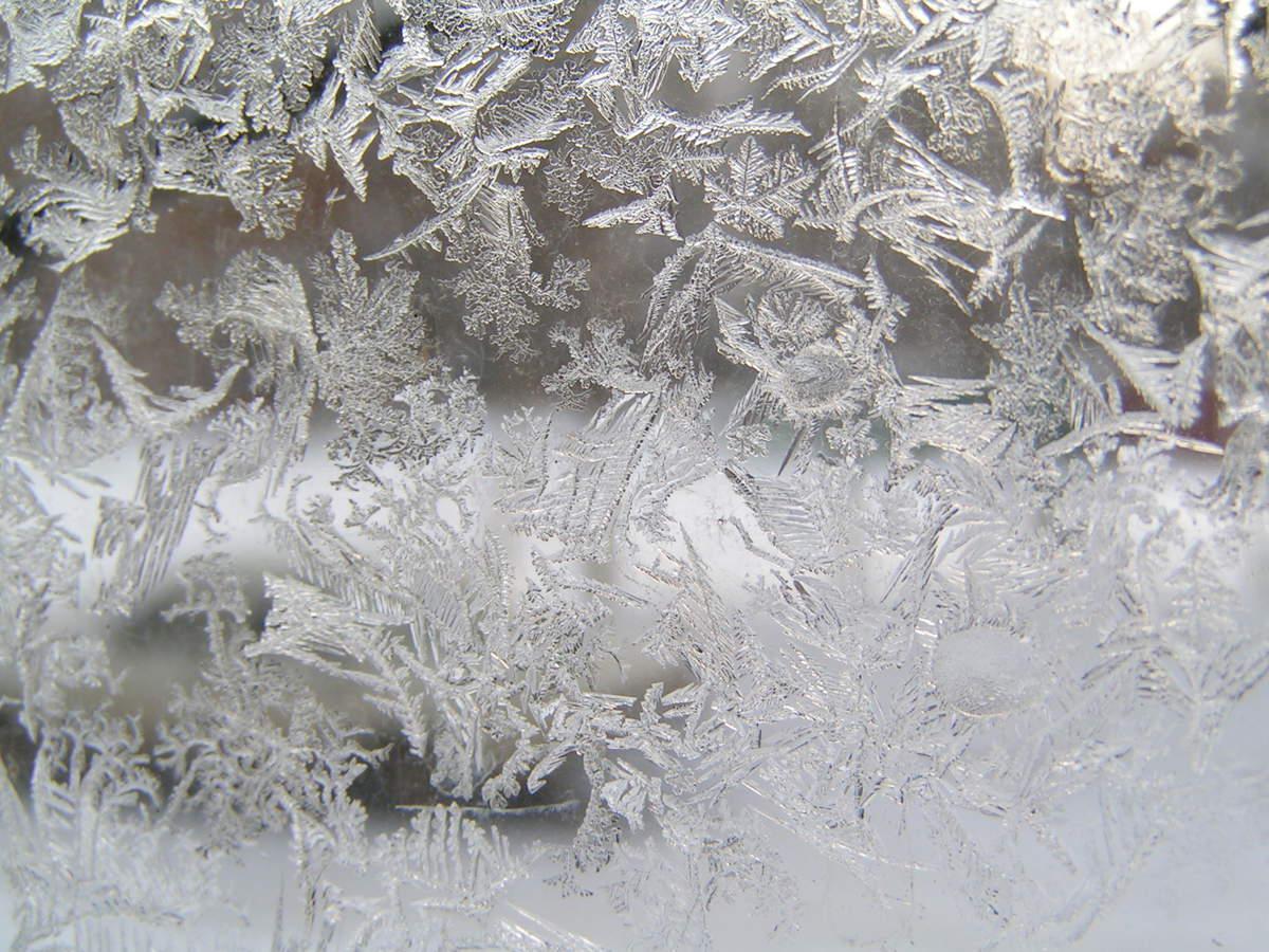 В Ярославль на этой неделе придет зима – синоптики