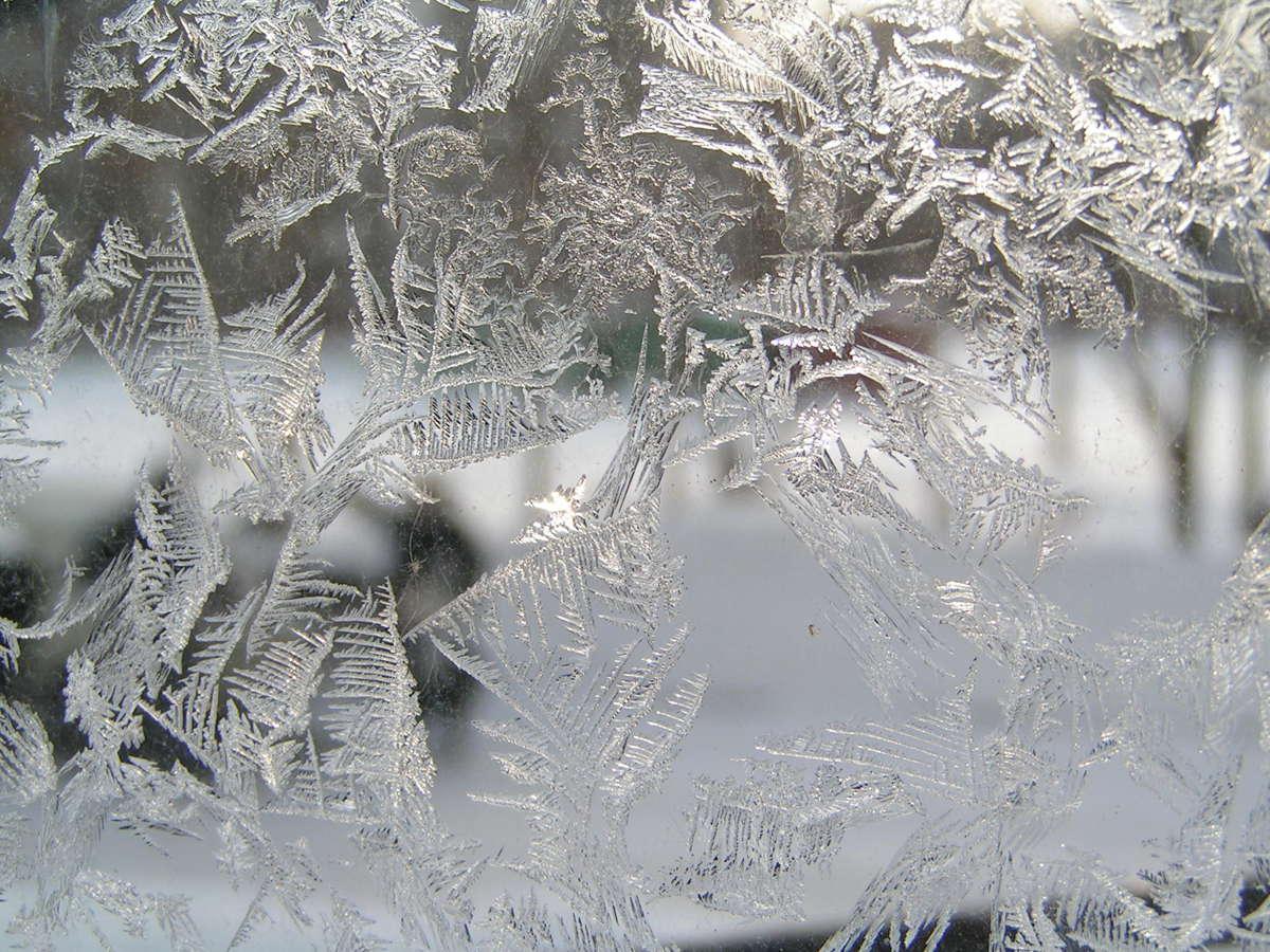 В выходные Ярославскую область заметет снегом