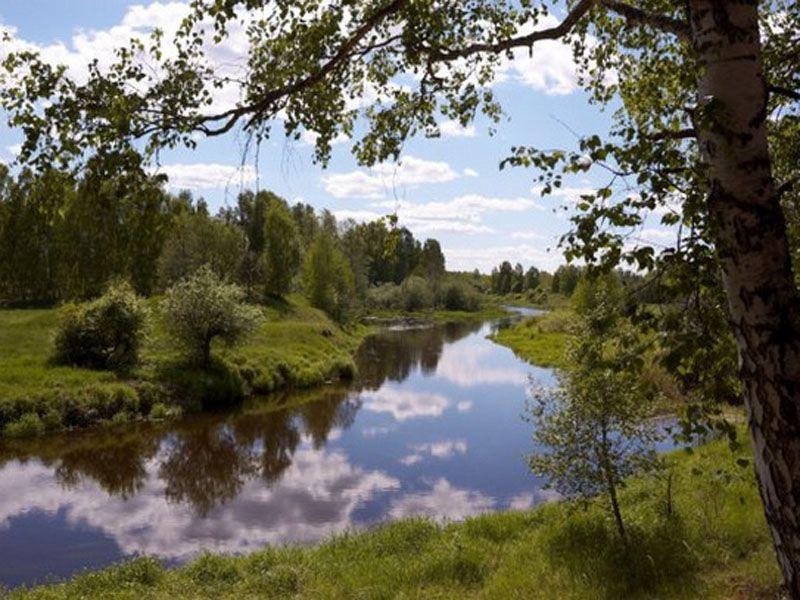 В Ярославскую область во второй половине августа вернется лето