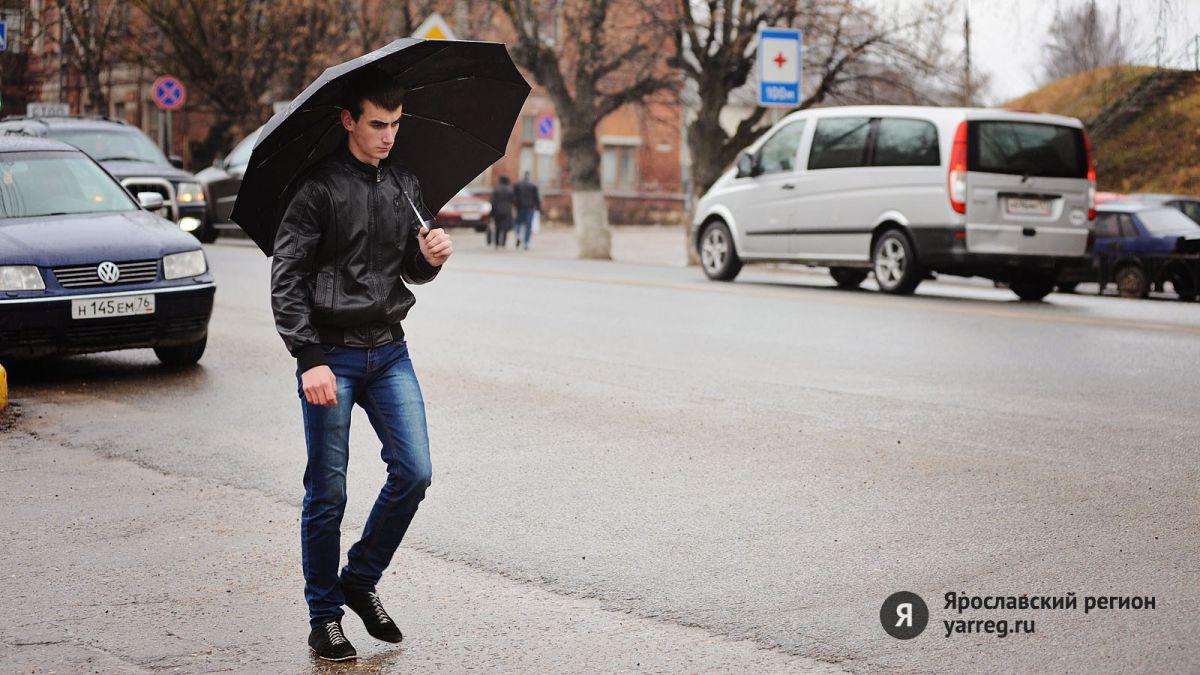Ноябрь в Ярославской области будет теплее обычного – синоптики