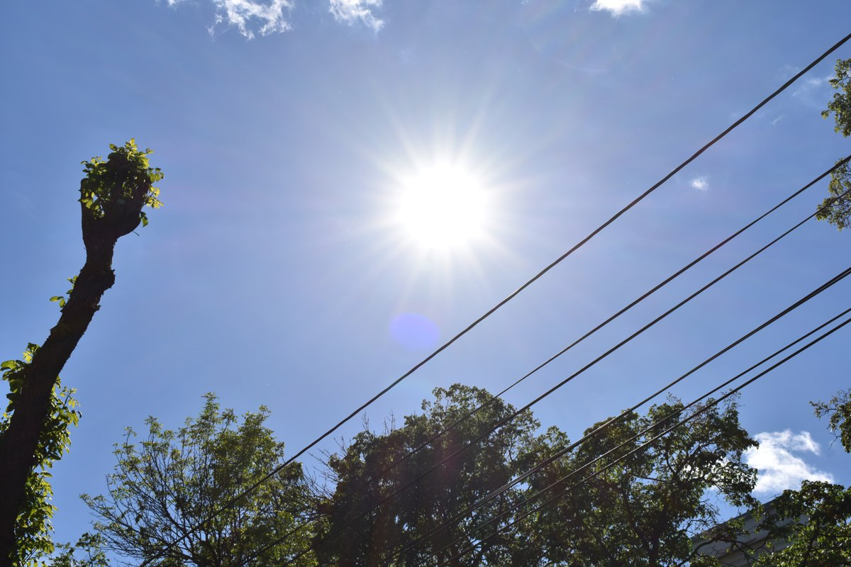 Введен оранжевый уровень опасности: в Ярославской области в выходные ждут аномальную жару