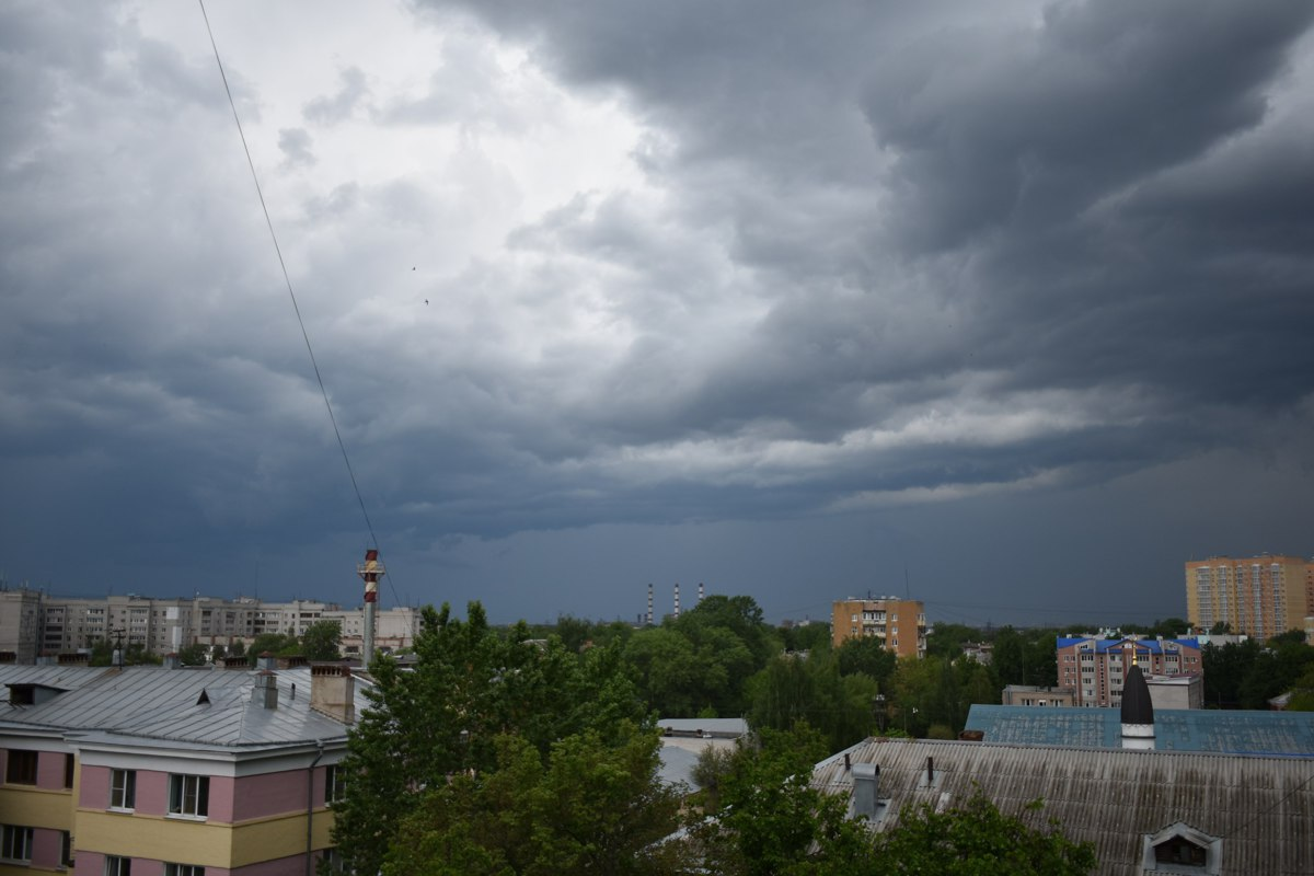 Тепло и сильные дожди: синоптики рассказали о погоде в Ярославле в ближайшие дни
