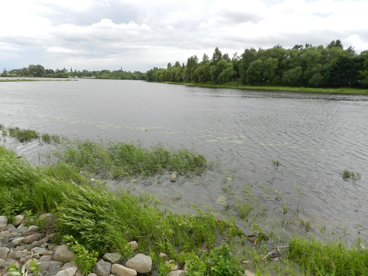В Ярославской области при купании утонул пьяный мужчина