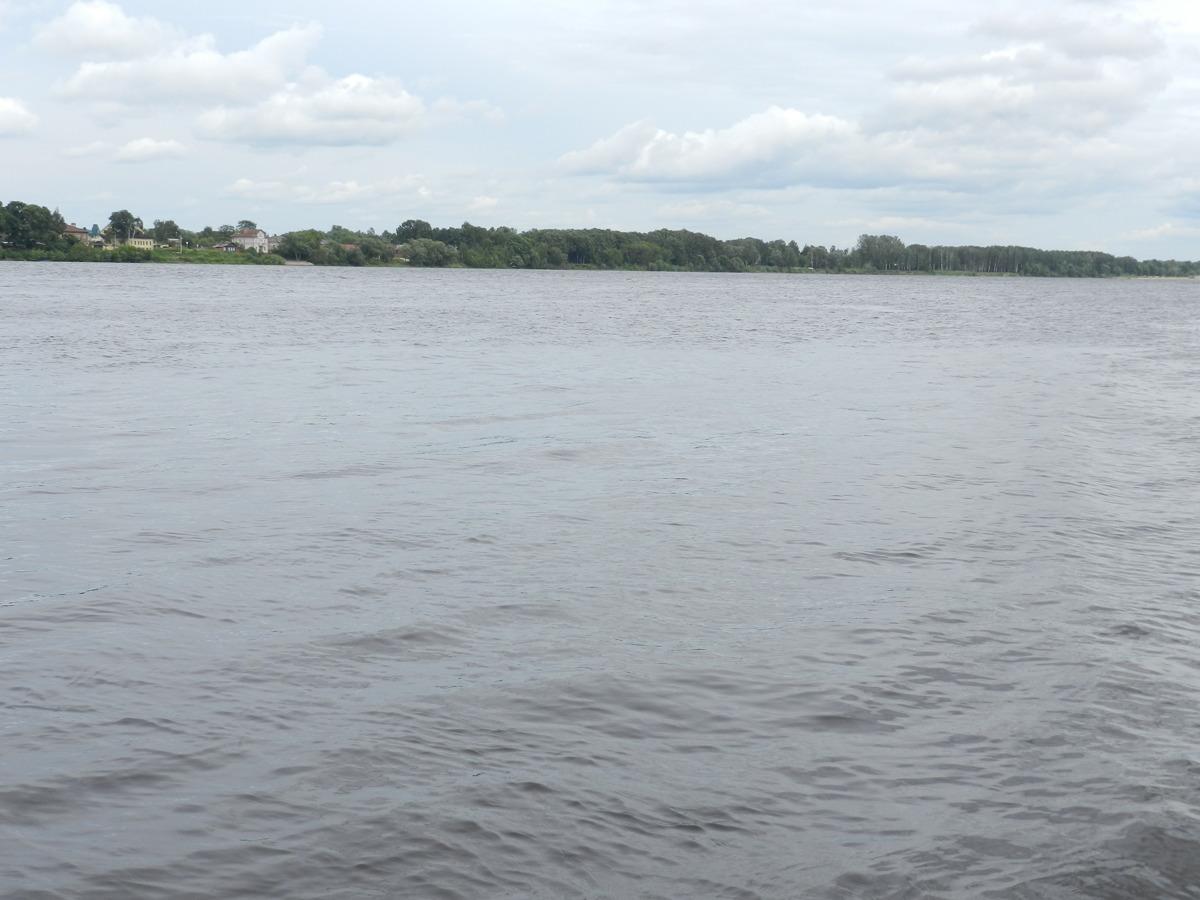 В Рыбинске спасатели вытащили из воды трех нетрезвых мужчин