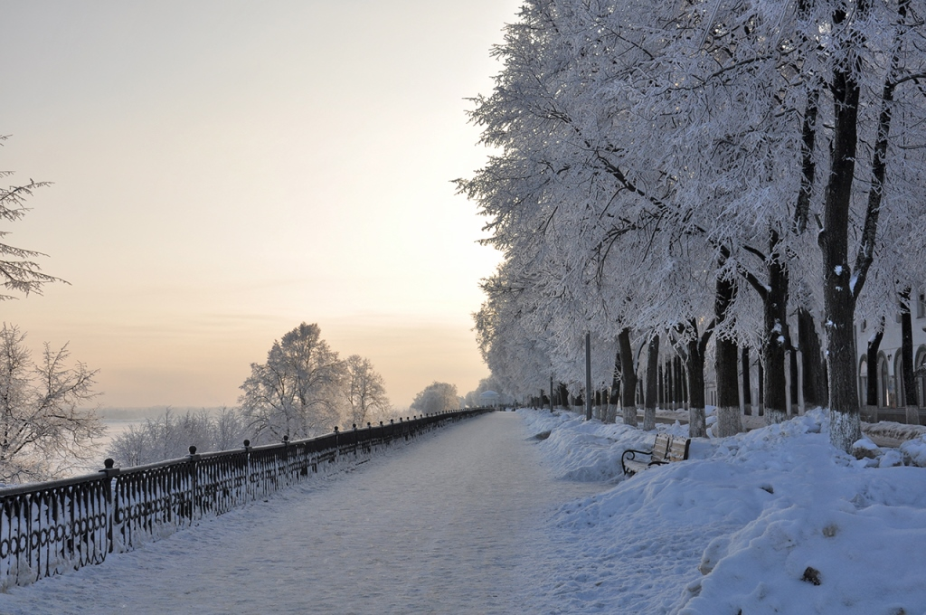 МЧС: температура в Ярославской области опустится до 27 градусов мороза