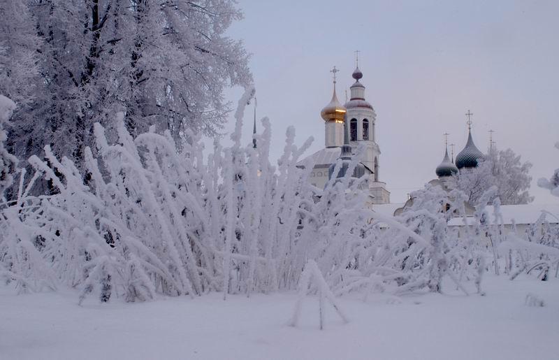 После аномального тепла аномальный холод: синоптики прогнозируют сильные заморозки в Ярославской области