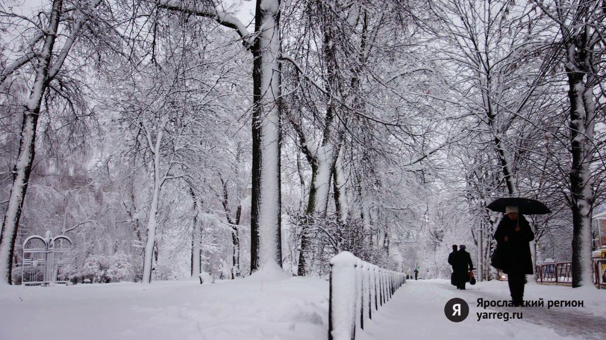 В Ярославской области ожидают сильный снегопад